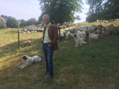 Johannes Remmel besucht Wanderschäfer in Iserlohn / Hemer